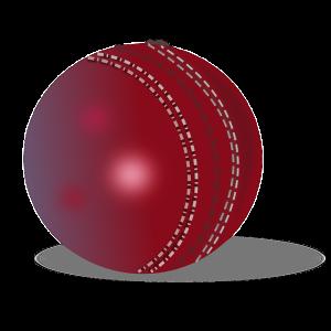 cricket-ball-295206_640